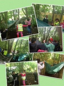 Shelter building!