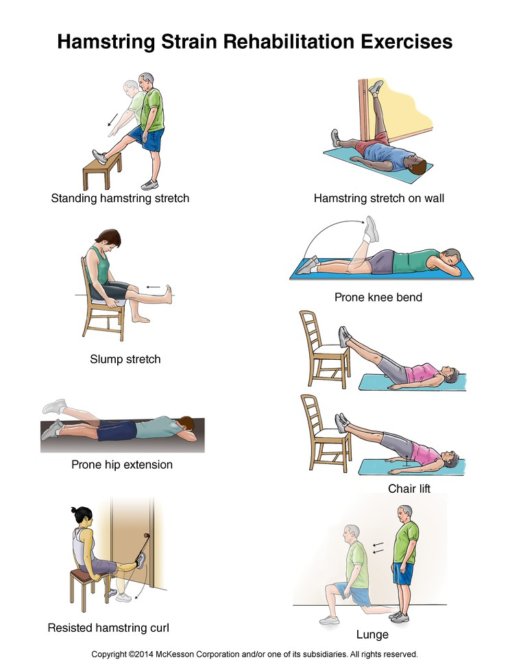 Physiological Rehabilitation: Spence's Input | Hamstring ...