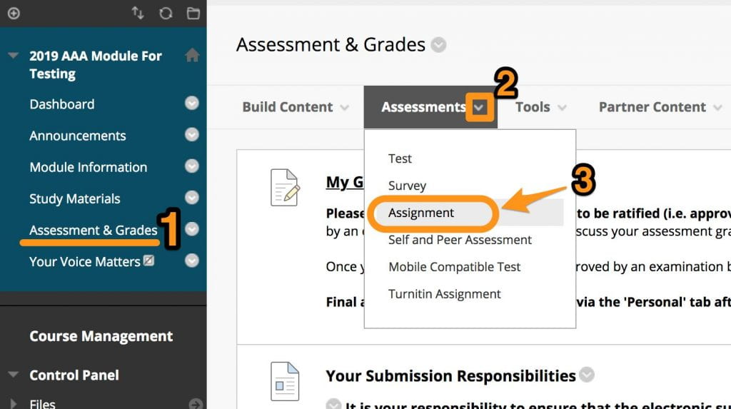 View of a studentcentral module 'Assessment & Grades' area, showing the drop-down selection from the 'Assessment' menu option. In this case, Assignment is selected.