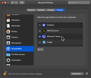Screenshot of the Accessibility settings on Mac OS Mojave