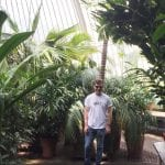 My experience as a placement student at Kew