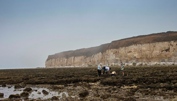 Students looking at rock pools with cliffs in the background