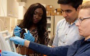 Brighton medical school is top UK institution in global university rankings