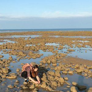 Rock pool survey discoveries