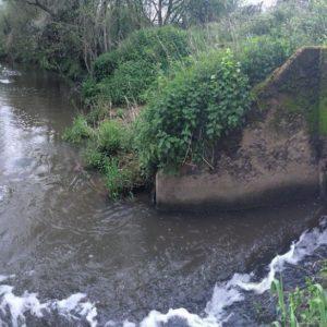 Brighton academic spotlights water pollution reporting failings