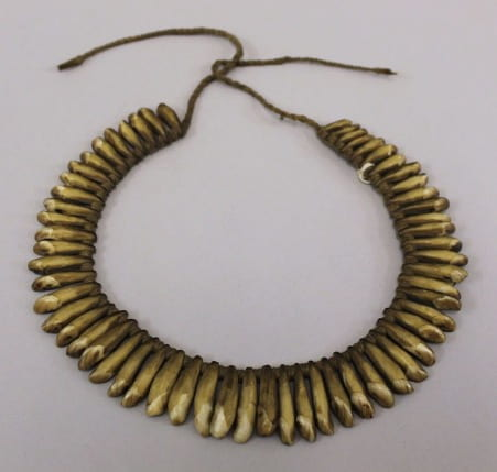photograph of a necklace made from the teeth of dolphins