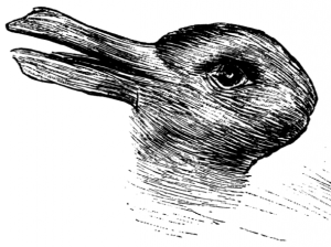 Rabbit or duck?