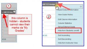 Grade-Centre-hidden-column-3