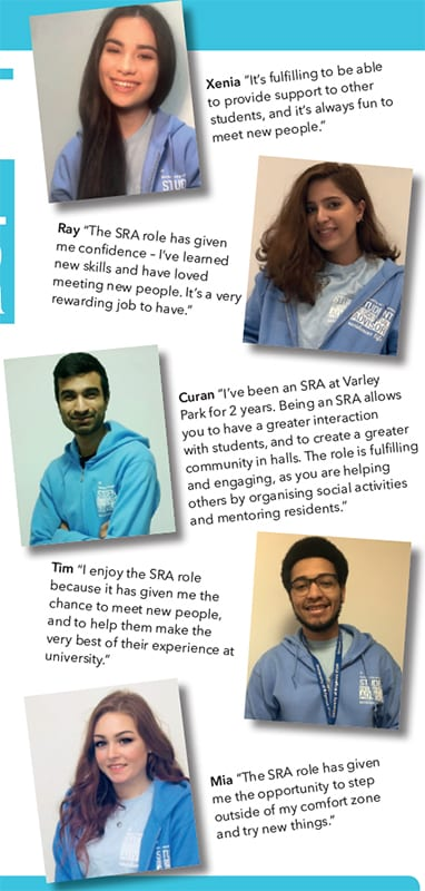 What previous SRAs say about the role