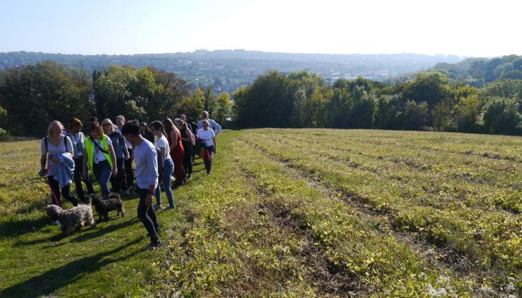 Groups of students taking a countryside walk