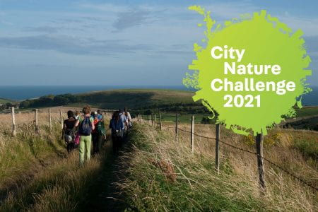 Walking on teh South Downs for City Nature Challenge 2021