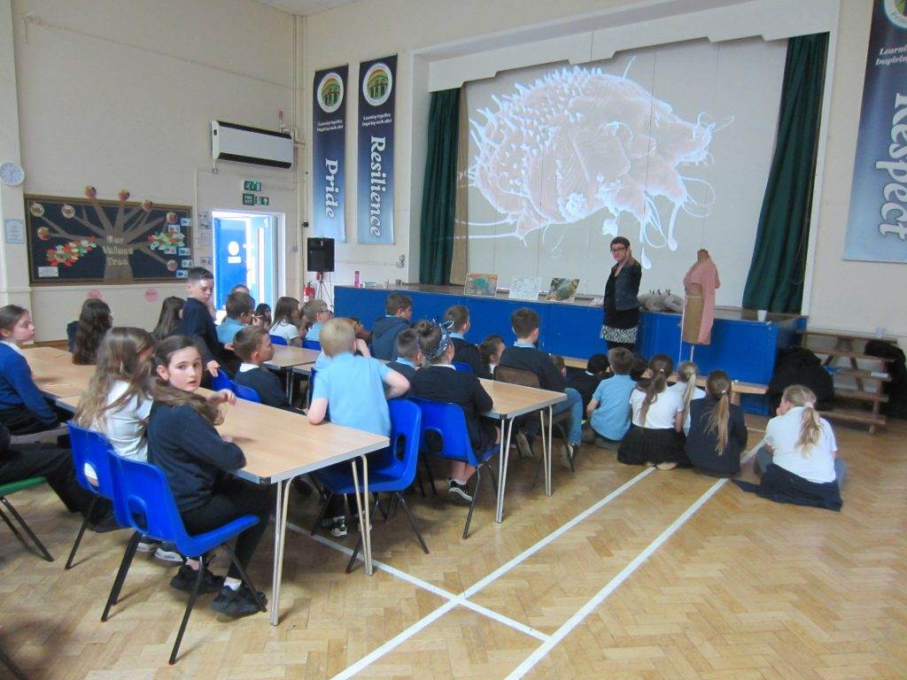 Stef giving her talk on scabies to the year 5 pupils at Coldean Primary School
