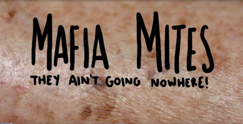 mafia mites