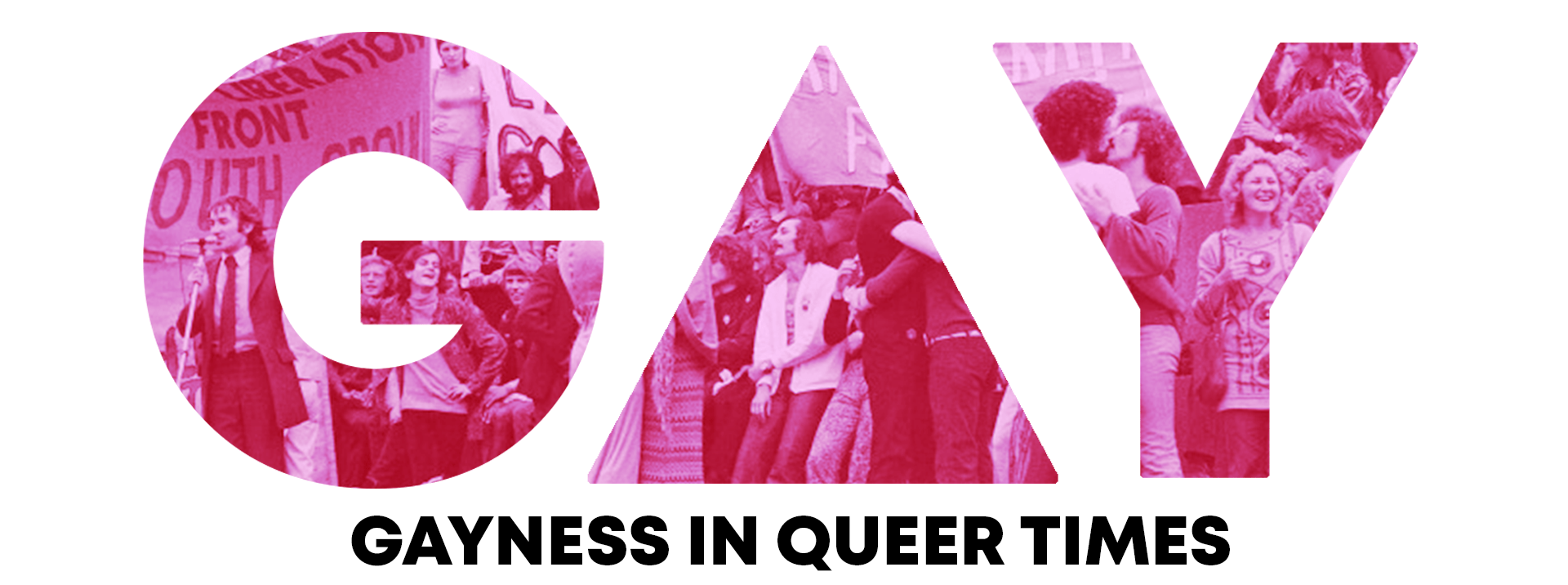 Gayness In Queer Times