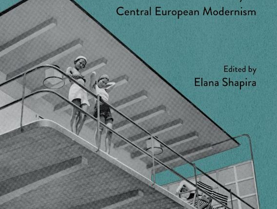 Designing Transformation: Jews and Cultural Identity in Central European Modernism book cover
