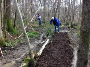 covering the path with wood chippings