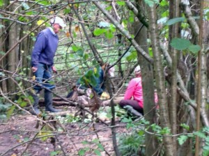 John, Carol and Bill are putting in a shift making pathways robust in wet weather'