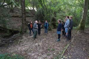 explaining how a woodland evolves
