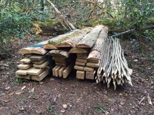 bean poles cut in a woodland setting