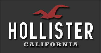 Hollister's Company Background | Digital Marketing