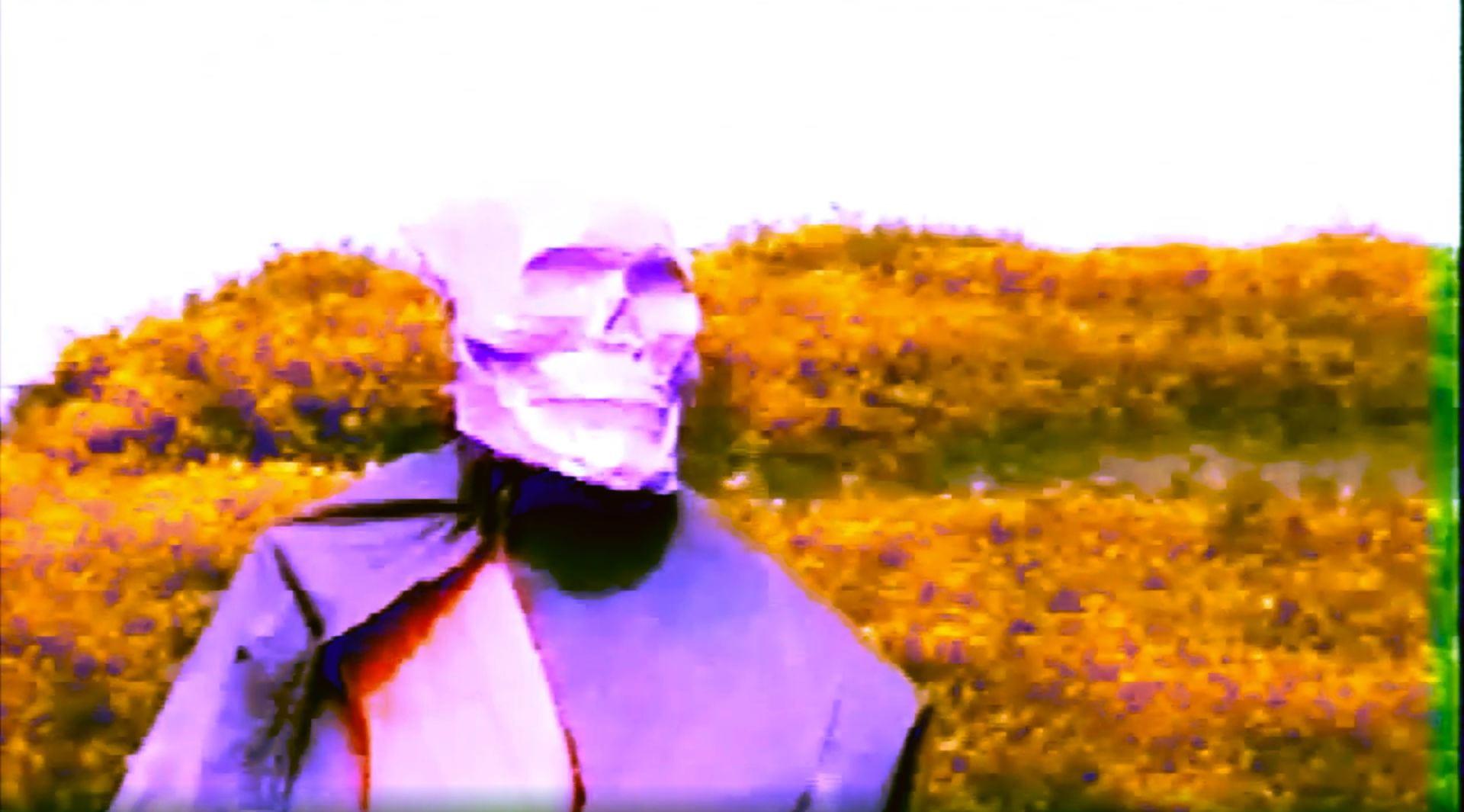 experimental film art video limbo dante death skull hi8 camera
