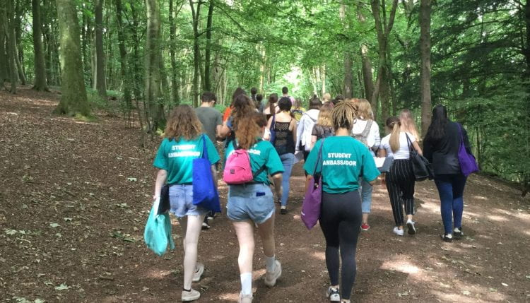 students walking through the woods