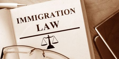 image of a book tidled immigration law
