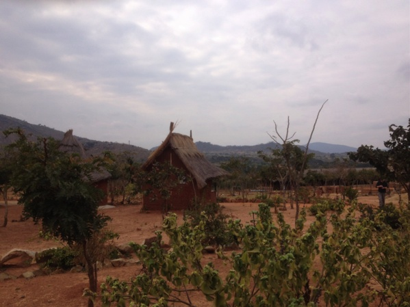 Isimila African Gardens