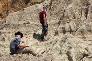Dr James Cole (left) and Dr Martin Bates (right) using resistivity (a type of geophysics) to help characterise the different sediment layers present wihin the karongo at Isimila.