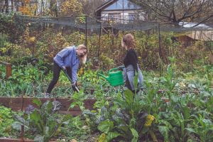 Students volunteering for Moulsecoomb Forest Garden and Wildlife project