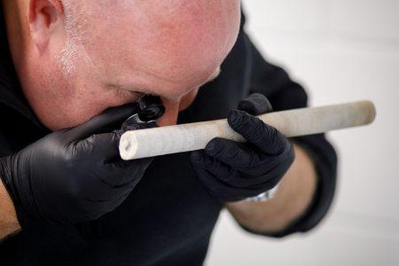 Professor Nash analysing stone core