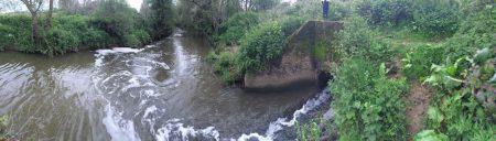 A river, grassy and bridge