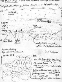 geology field notebook