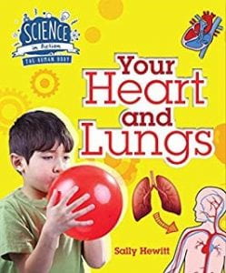 Heart and lungs science book
