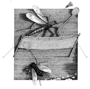 The daddy-long-legs and the fly, from The Nonsense Verse of Edward Lear, 1984
