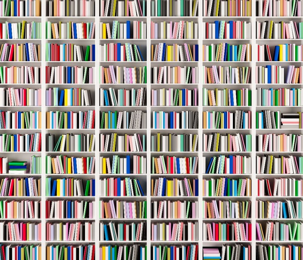 shelves of books