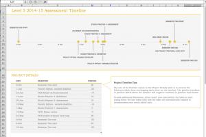 tidyform timeline template