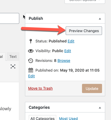 "Arrow pointing at teh ""Preview Changes"" button in the Publish-widget area"