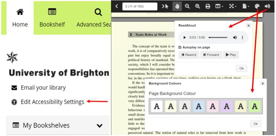 ebook accessibility options in ebooks at the library, highlighting font and background colour options