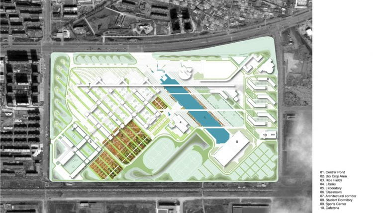 Masterplan of Shenyang Architectural University showing the position of the Rice Fields (source: Turenscape Landscape Architecture www n.d.)
