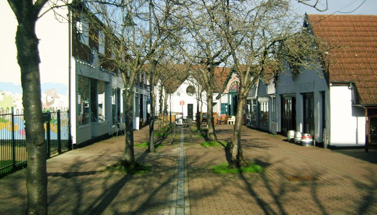 The Wynd, a pedestrianised retail and artisan-workshop street in the centre of Letchworth, is lined with two rows of fruit trees. (source: Katrin Bohn 2020)