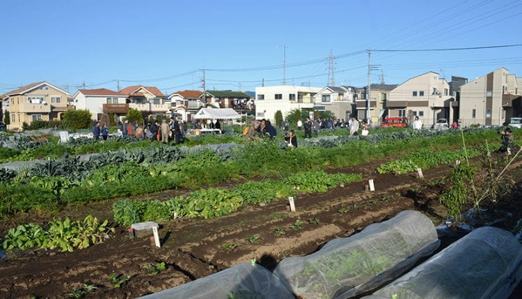 A resilient food system will be distributed and evenly spread, so that, if shocks occur, small amounts of food from many produces can be sent to places in need. The Kato Farm in Nerima City, Tokyo, is a good example of how this resilient urban landscape may look and how it can be used. Socially embedded food systems working as part of a larger network, like this one, have much to offer as we rethink post Covid 19 and in the midst of climate change adaptation and mitigation. (image: Bohn&Viljoen 2019)