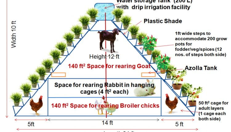 Chatterjee et al. refer to this Integrated Vertical Farming System at Tripura, India, developed and live tested by ICAR Research Complex. (source: Singh, A. KVK South Tripura 2015)