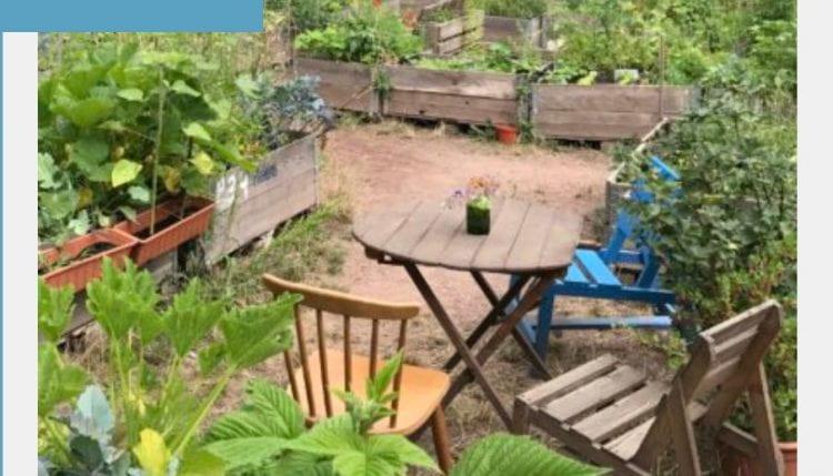 The online platform invites dialogue on and around Berlin's 212 community gardens. (source: Bundespreis Stadtgrün www 2020)