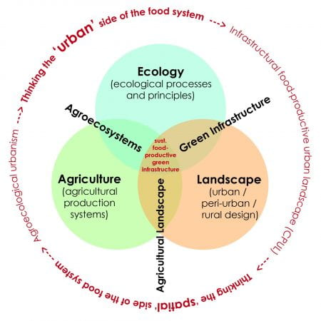 There is a need to integrate the 'urban' and the 'spatial' sides of the food system into future urban and regional planning. (source: Katrin Bohn and Dong Chu 2019)