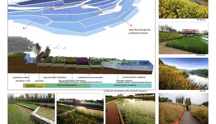 Shanghai Beach (Houtan) Park by Turenscape Landscape Architecture (source: Turenscape Landscape Architecture www n.d.)