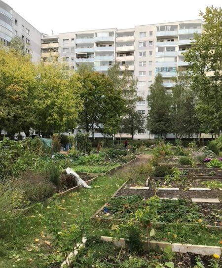 18 Berlin community gardens were part of the winning project, apart from Spiel/Feld also the Nachbarschaftsgarten Wiecker Straße. (source: Monika Egerer 2020)