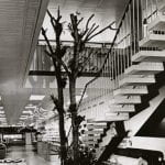 Black and white photo of a department store fabric department with staircase and decorative trees
