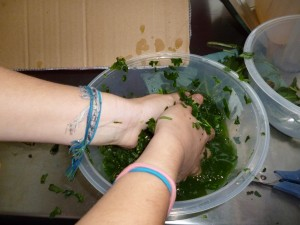 Mixing vinegar and woad leaves together