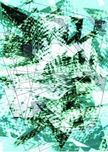 woad/digital print